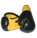 Martial Arts Faze 101 equipment Professional Leather Boxing gloves